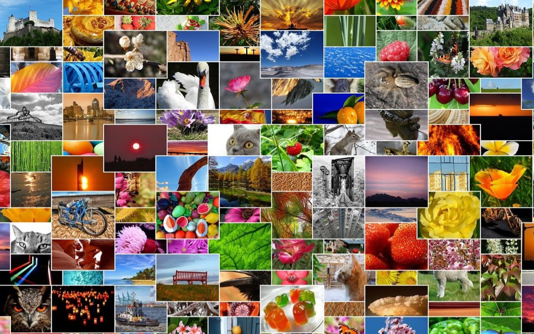Remember That You Can Search for Nearly Anything in Your Photos Library